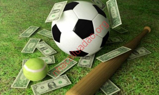 Cung cấp dịch vụ cá cược thể thao là thế mạnh của Vwin